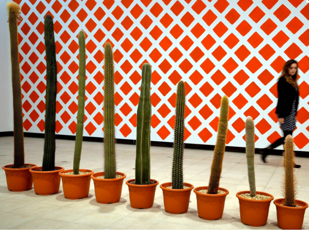 Martin Creed, row of ever smaller Cactus plants